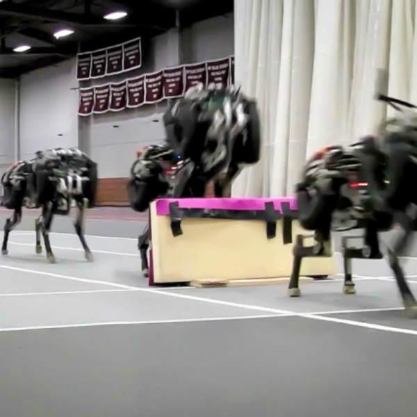 mit cheetah robot jump over hurdle race