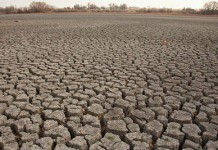 drought land in India