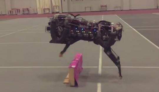 Chetah robot